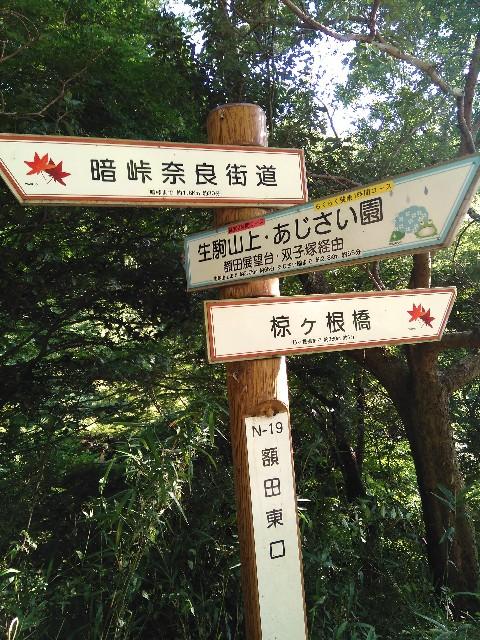 f:id:yukimasa28:20190728102701j:image
