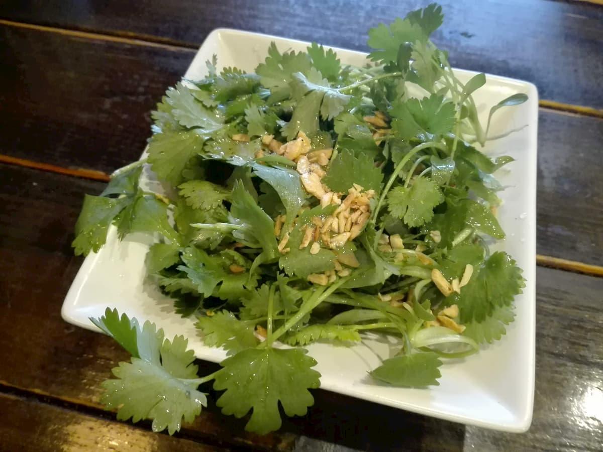 coriander-salad