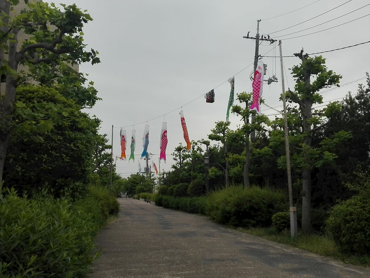 koi-nobori