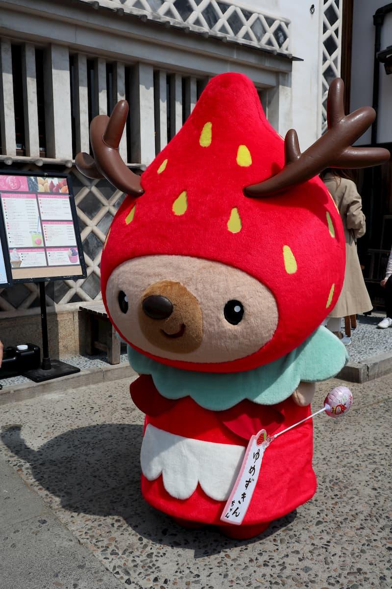 yumezukin-chan