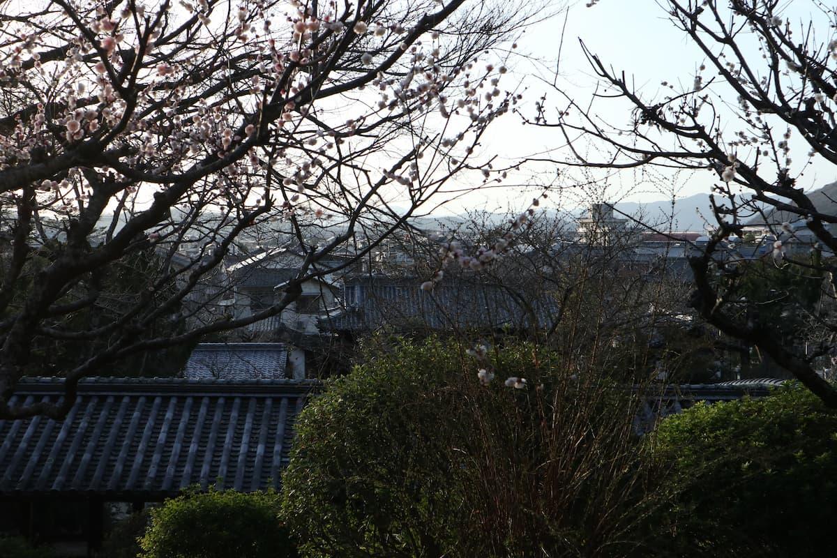 view-from-kibitsu-shrine
