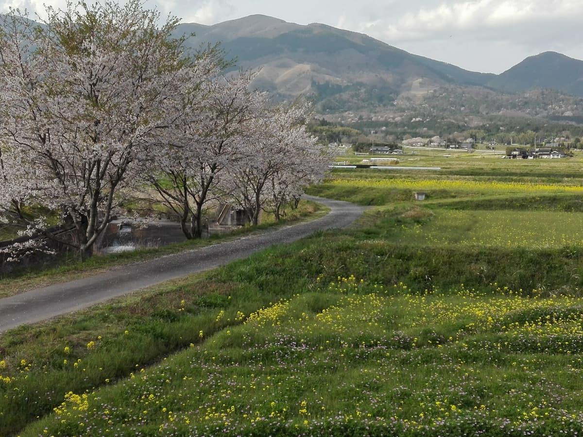 landscape-of-Nagi