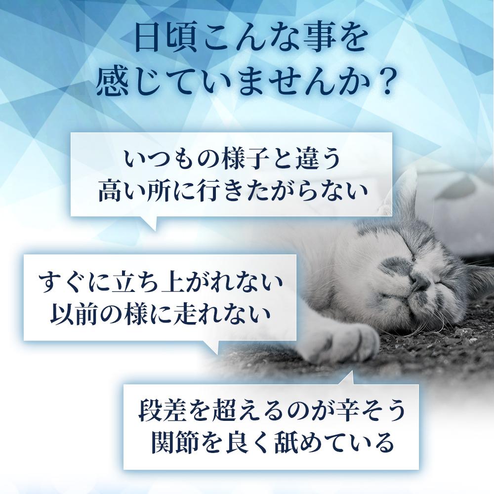 f:id:yukimi689:20210406122606j:plain