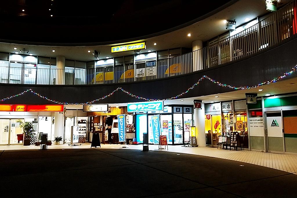 f:id:yukimura4:20201220203418j:plain
