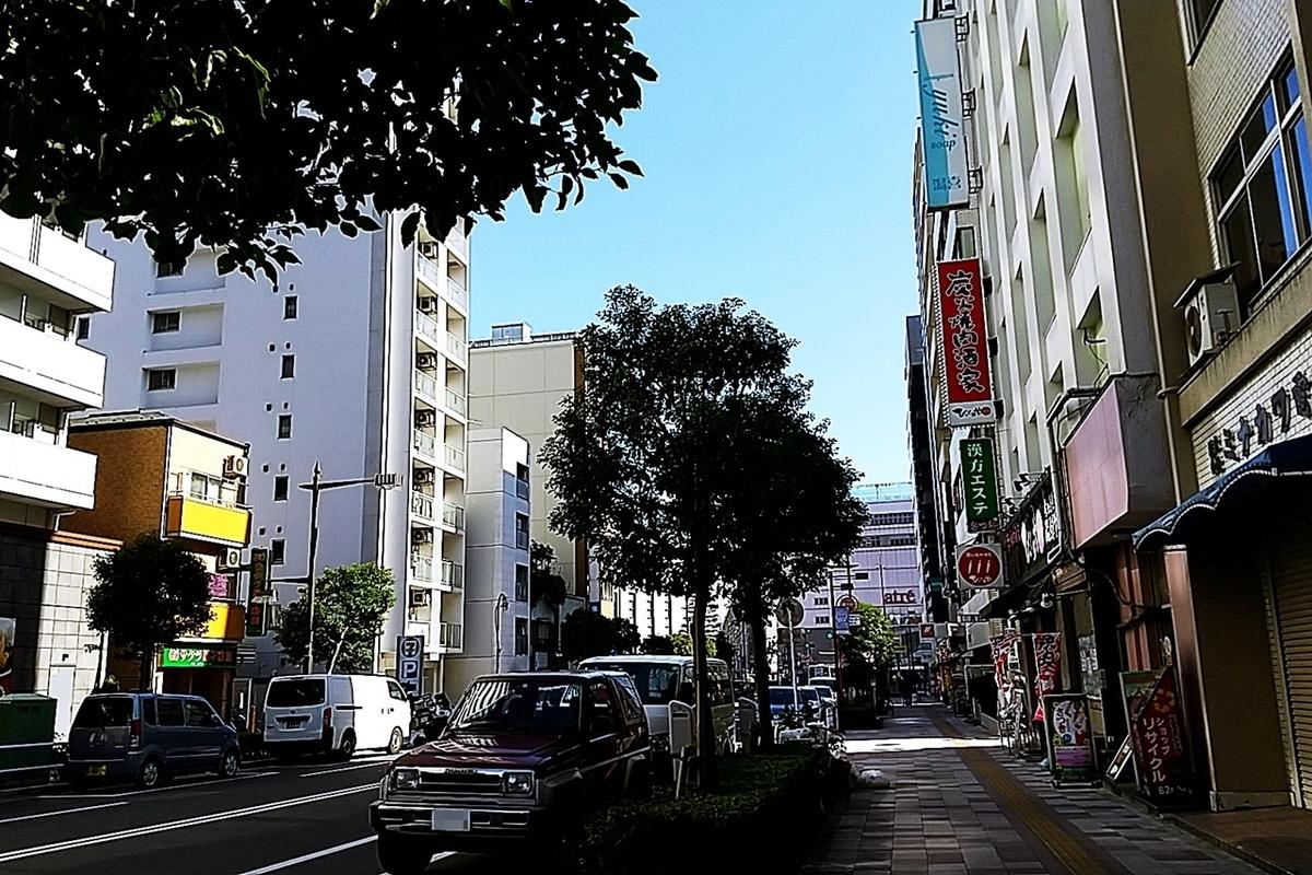 f:id:yukimura4:20210131181235j:plain