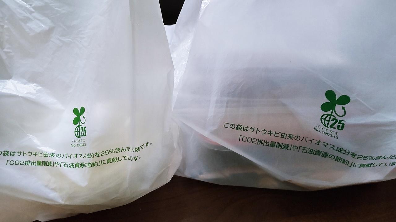 f:id:yukimura4:20210503182139j:plain