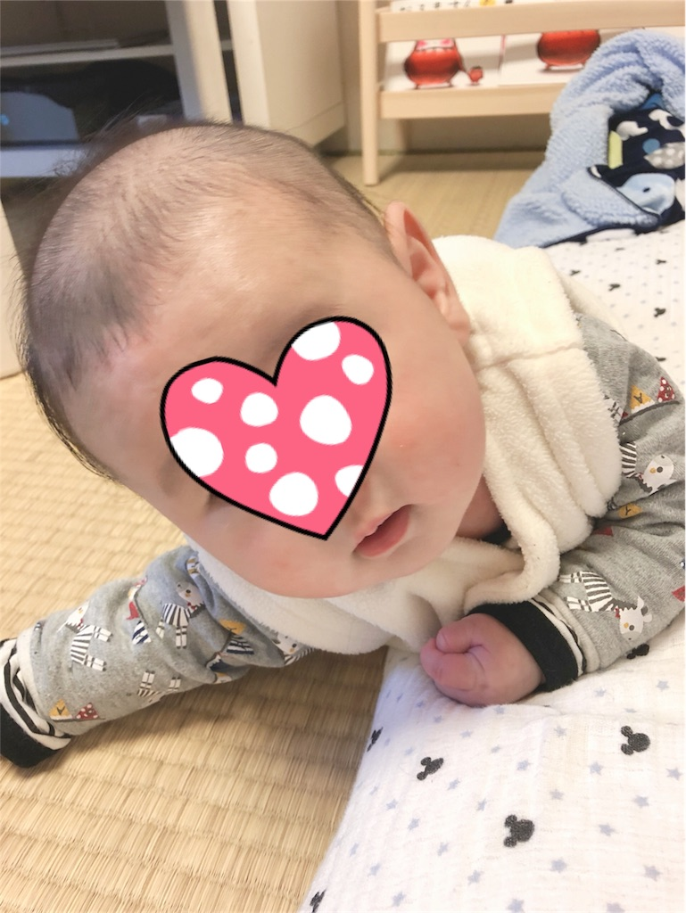 f:id:yukina_na:20181203215623j:image