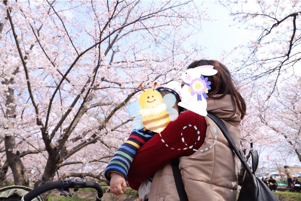 f:id:yukina_na:20190405210329j:image