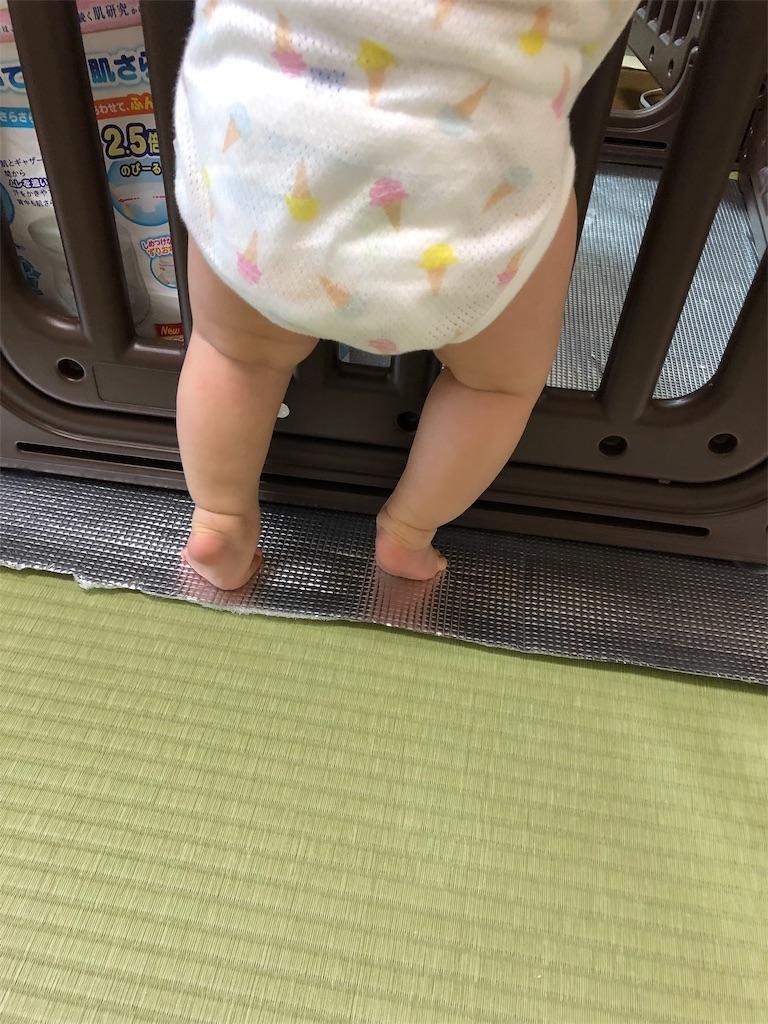 f:id:yukina_na:20190625145242j:image