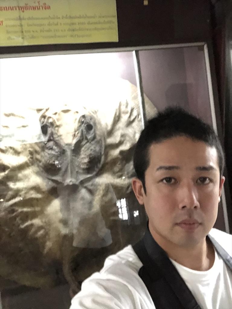 f:id:yukinari1204:20180213135004j:plain