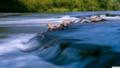 綺麗な流れの水海
