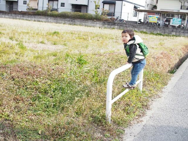 f:id:yukincomama:20170131124626j:image