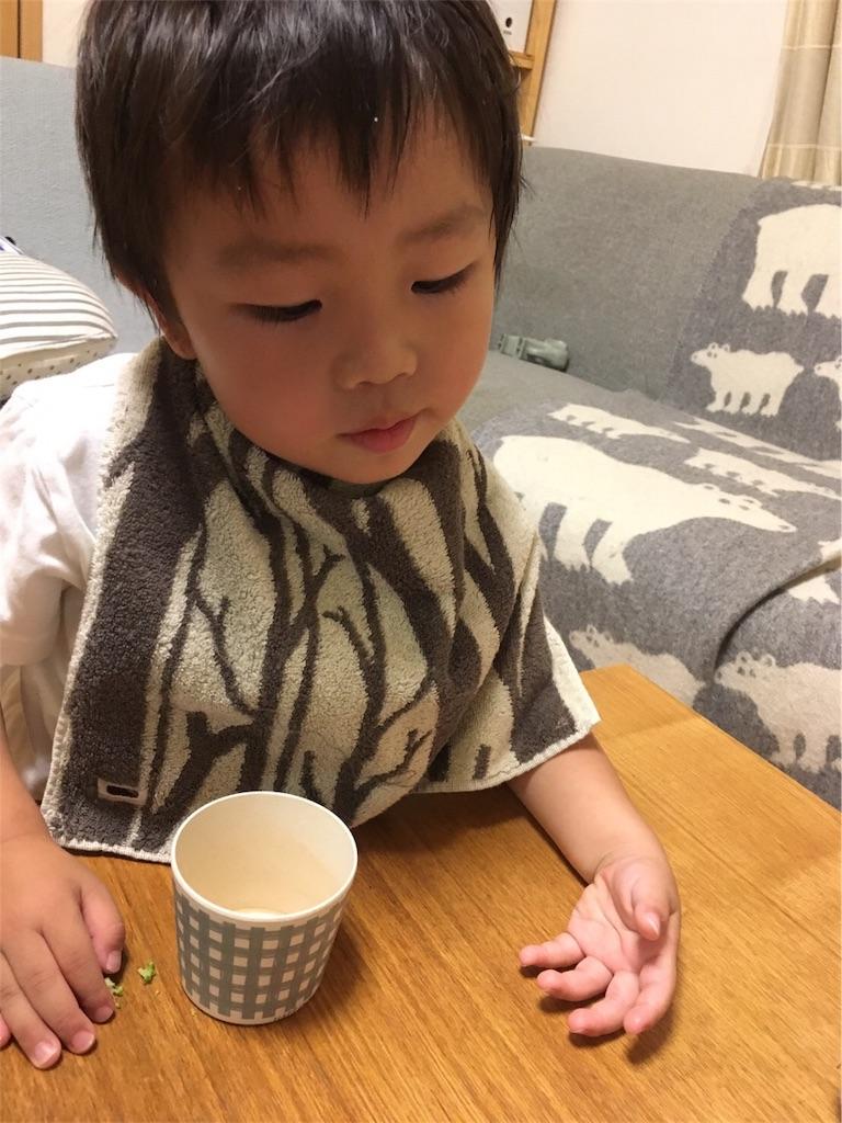 f:id:yukincomama:20170629110148j:image