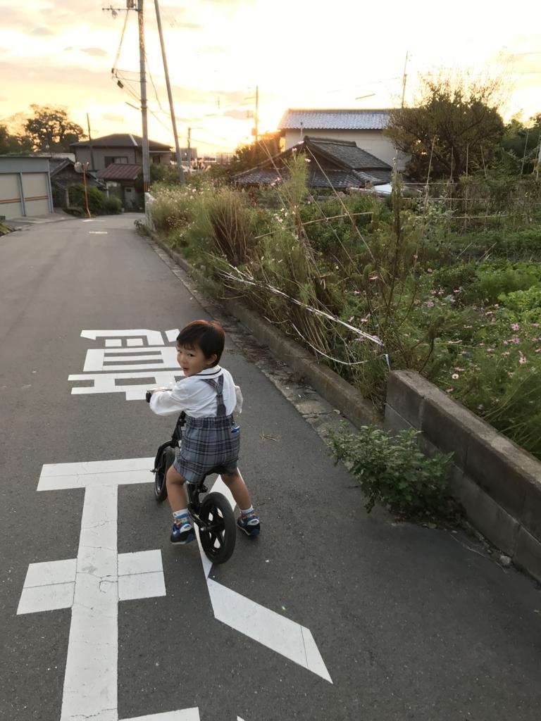 f:id:yukincomama:20171026112858j:plain