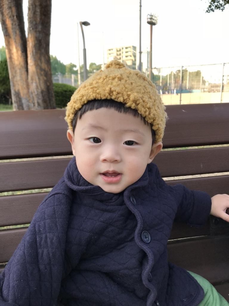 f:id:yukincomama:20171108155931j:plain