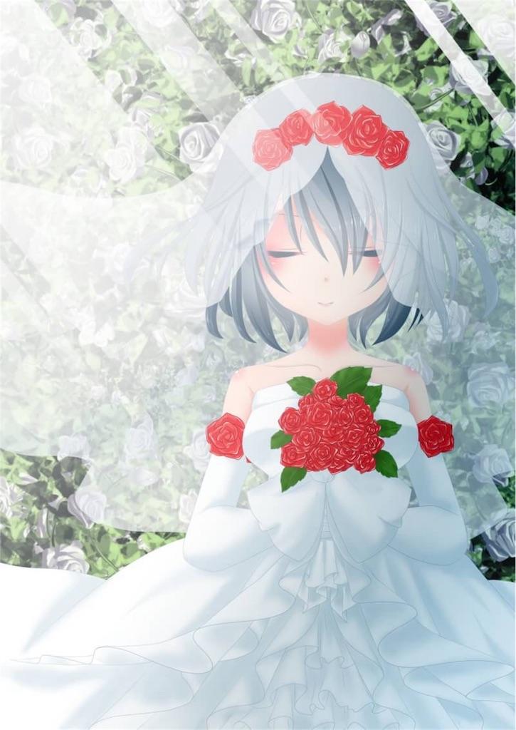 f:id:yukineko-02:20180716070208j:image