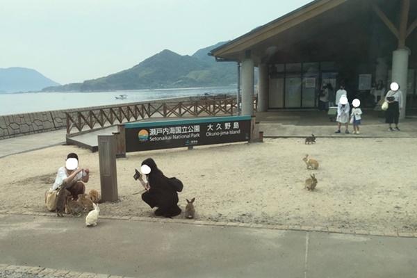 f:id:yukinekokei:20190603101223j:plain