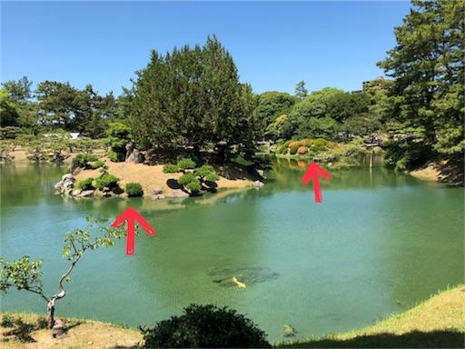 f:id:yukinekokei:20190621161356j:image