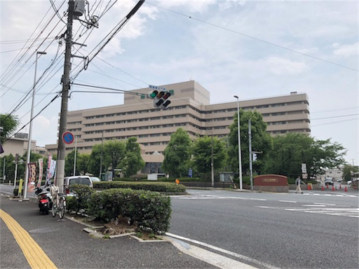 f:id:yukinekokei:20190623081012j:image