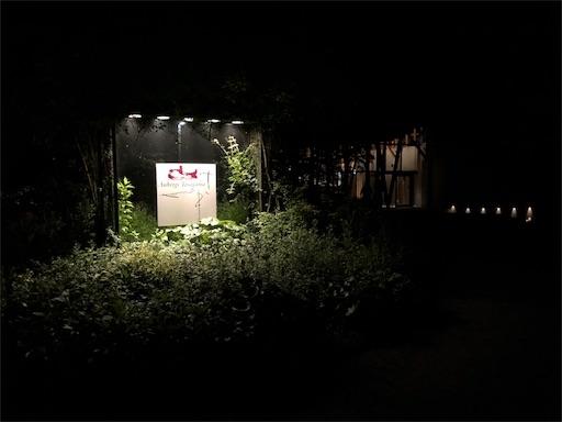 f:id:yukinekokei:20190629141100j:image
