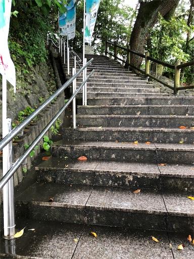 f:id:yukinekokei:20190702191139j:image