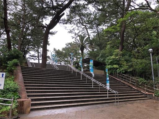 f:id:yukinekokei:20190702191452j:image