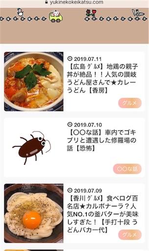 f:id:yukinekokei:20190711225616j:image