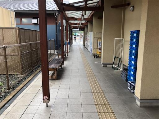 f:id:yukinekokei:20190723082634j:image