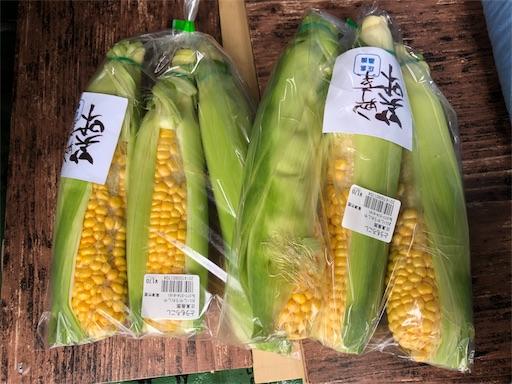 f:id:yukinekokei:20190723203508j:image