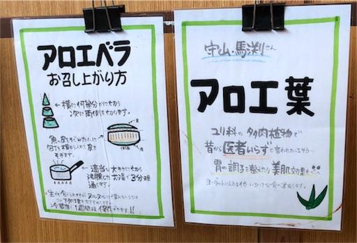 f:id:yukinekokei:20190723235356j:image