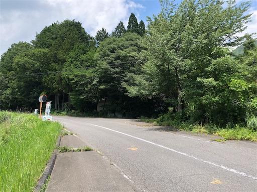 f:id:yukinekokei:20190729203026j:image