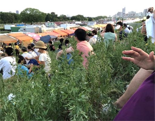 f:id:yukinekokei:20190812221243j:image