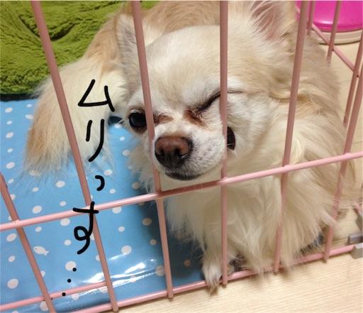 f:id:yukinekokei:20190827122758j:image