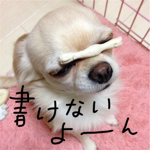 f:id:yukinekokei:20190827125050j:image