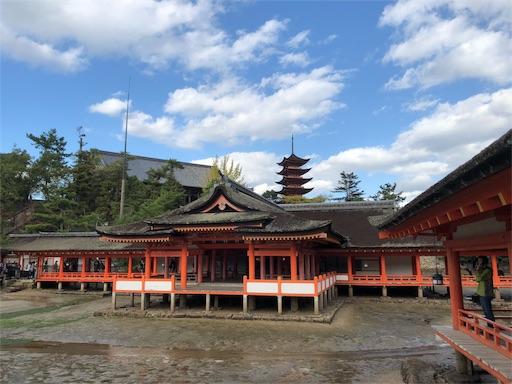 f:id:yukinekokei:20190829082829j:image