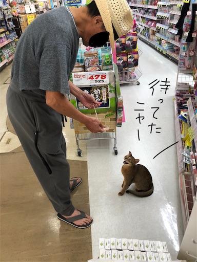 f:id:yukinekokei:20190830122500j:image