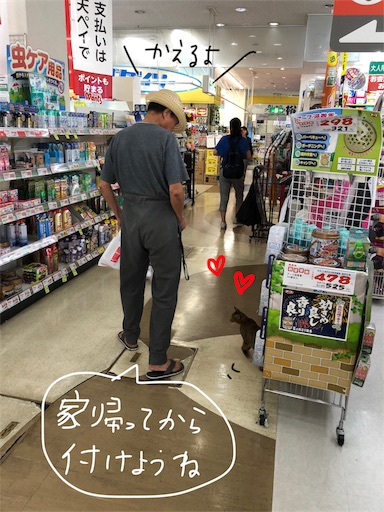 f:id:yukinekokei:20190830124840j:image