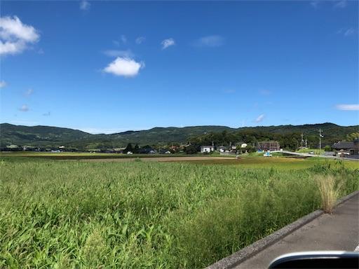 f:id:yukinekokei:20190909132116j:image