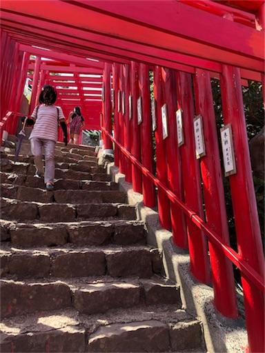 f:id:yukinekokei:20190914145627j:image