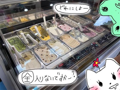 f:id:yukinekokei:20190915210541j:plain