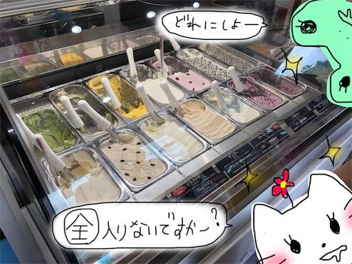 f:id:yukinekokei:20190915211724j:plain