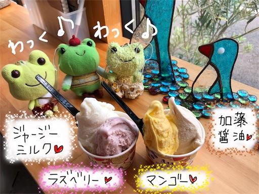 f:id:yukinekokei:20190915220617j:image