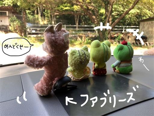 f:id:yukinekokei:20190918000029j:image