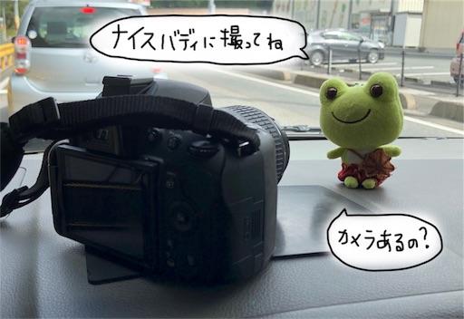 f:id:yukinekokei:20190918080644j:image