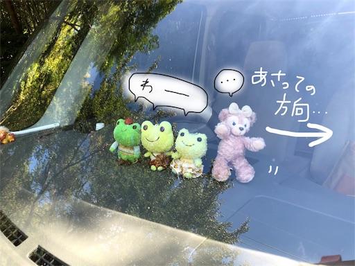 f:id:yukinekokei:20190918082304j:image