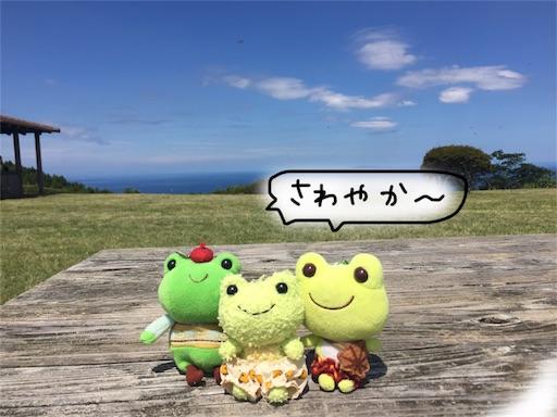 f:id:yukinekokei:20190918093929j:image