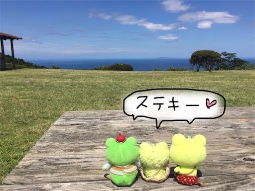 f:id:yukinekokei:20190918093934j:image
