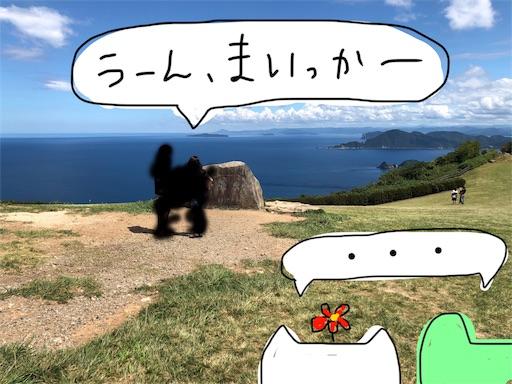 f:id:yukinekokei:20190918094400j:image
