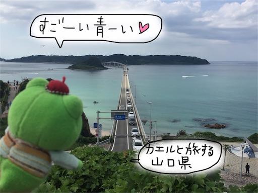 f:id:yukinekokei:20190919081127j:plain