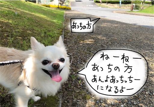 f:id:yukinekokei:20190929193944j:image